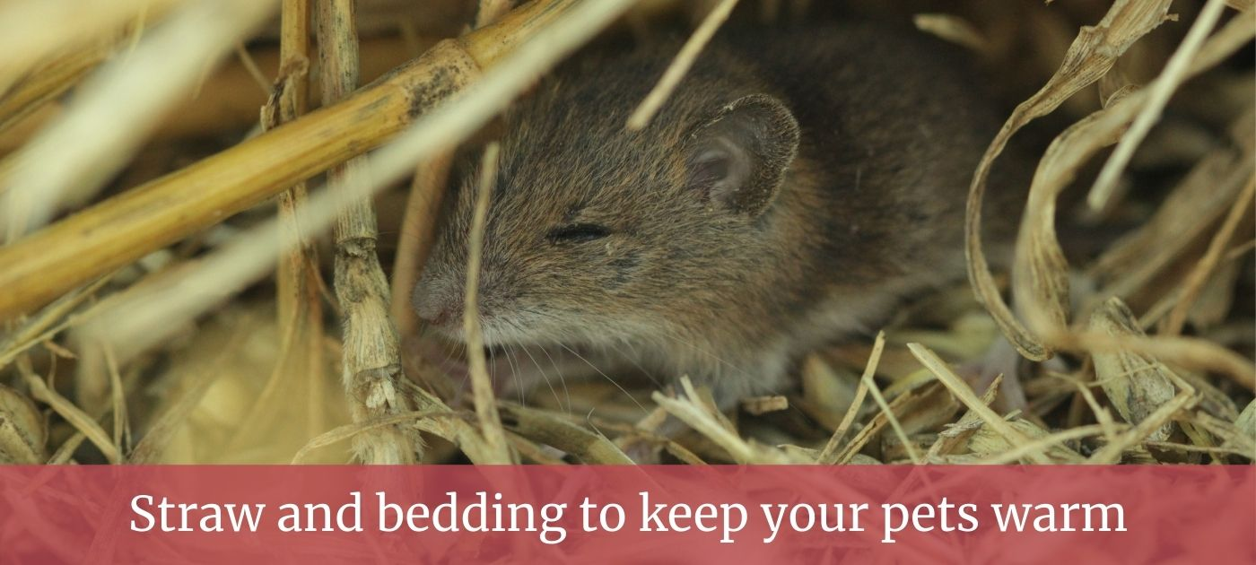 Mouse straw bedding page slider
