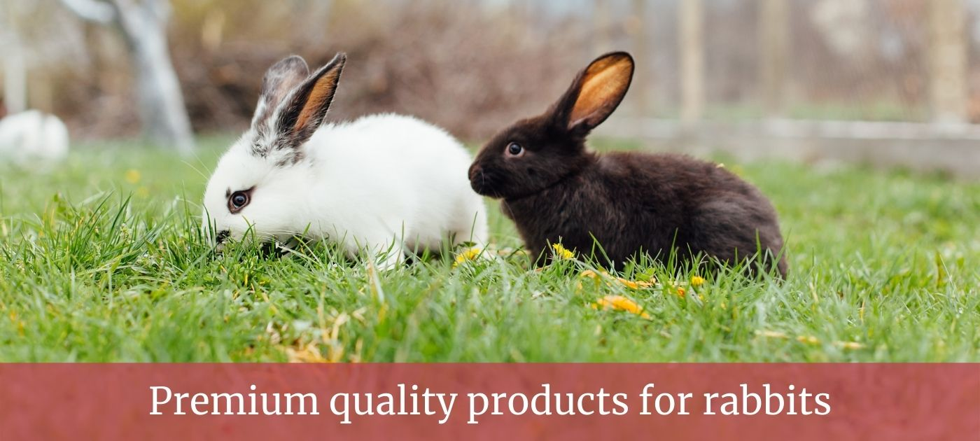 Rabbit product page slider
